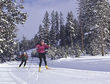 Lake Tahoe Cross-Country Skiing