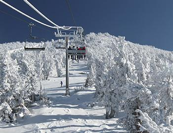 Lake Tahoe Skiing and Snowboarding