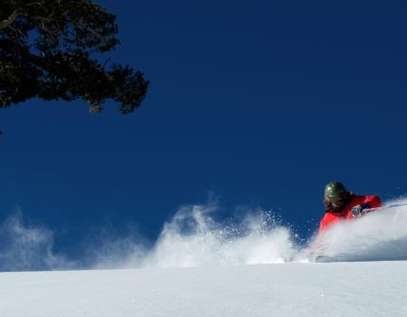 McKittrick - Downhill Ski