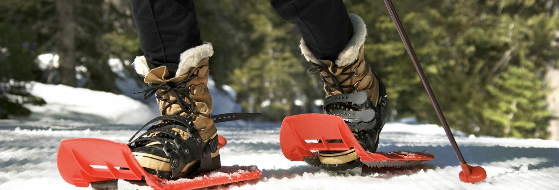 Lake Tahoe Snowshoeing