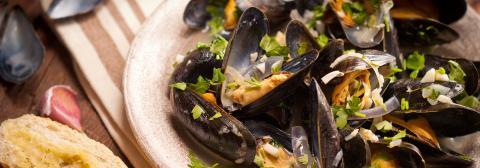 Tahoe City Restaurants Things To Do In Lake Tahoe