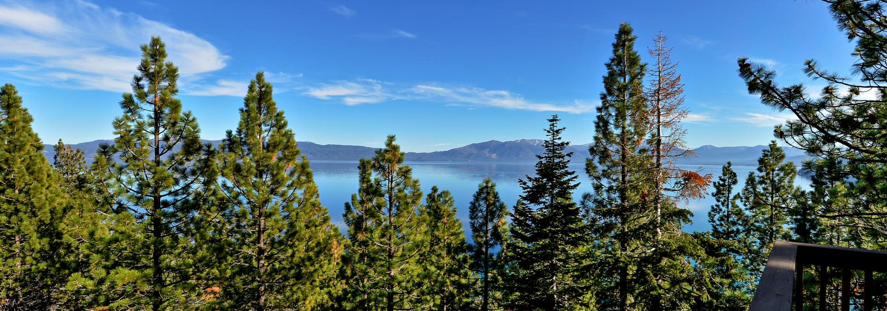 Lake Tahoe View