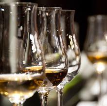 Wine glasses at wine tasting event.