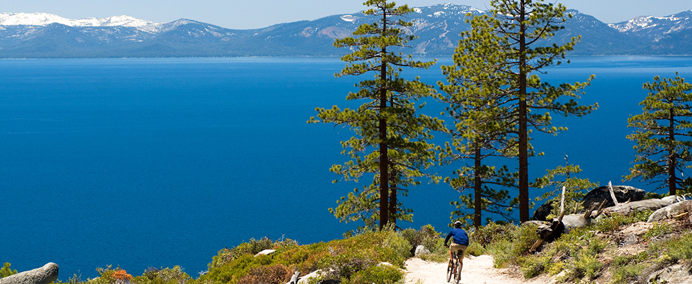 Lake Tahoe Mountain Biking - Biker